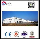 Estrutura de aço personalizados de alta qualidade (Depósito BYSS010)