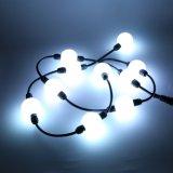 RGB DMX 3D LED 공 LED 끈 화소 빛