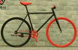 700c 싸게 2016년 중국 강철 Fixie 자전거 26 인치 성숙한 자전거 조정 기어 자전거