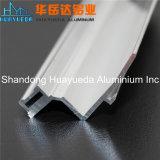 Profils en aluminium en aluminium argentés d'alliage d'aluminium d'extrusion de bâti de mur en verre