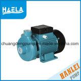 1HP série DK Pompe centrifuge/Les pompes à eau de surface