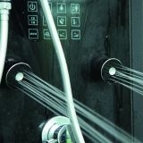 熱い蒸気およびシャワー室(M-8293)