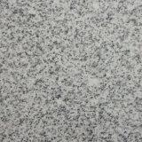 Prix bon marché naturel de carreaux de granit gris pour la vente