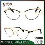 Het Optische Frame van het Oogglas van Eyewear van de Glazen van het Metaal van het Product van de goede Kwaliteit