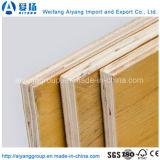 le bois de construction et le film de 1220X2440mm Chine ont fait face au contre-plaqué