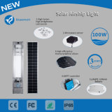100W lampe extérieure solaire de jardin de la lumière DEL avec le détecteur de mouvement