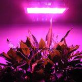 wachsen hohes Doppelt-Chip LED des Lumen-1000W Pflanzenlicht der Lampen-AC85-265V LED mit Cer RoHS Zustimmung