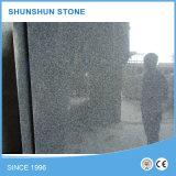 De snelle Grafsteen van het Graniet van de Verzekering van de Kwaliteit van de Levering G654 Zwarte