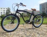 バイクのフェンダーが付いている電力浜の巡洋艦の自転車