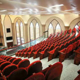 De Stoel van het Auditorium van de Stoelen van het Theater van de Lezing van de Plaatsing van het Auditorium van de Stoelen van het Theater van de Lezing van de Stoelen van de kerk (r-6157)