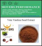 Uittreksel het van uitstekende kwaliteit van het Zaad van Vitis vinifera van het Uittreksel van de Installatie