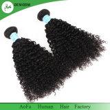 Человеческие волосы девственницы Dyeable самого лучшего цены Kinky курчавые бразильские