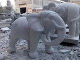 Weißer Elefant-Marmor-Stein-Garten-Dekoration-weißer Elefant, der Statue-Skulptur schnitzt