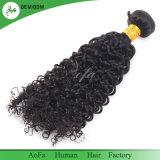 美しいペルーのバージンの毛のチャーミングなカーリーヘアー