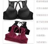 새로운 디자인 여자 란제리 이음새가 없는 브래지어는 놓았다 (CSA01)