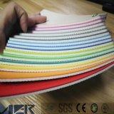 Aula de Kindergarten/sala de baile de suelos de vinilo suelos de PVC de color sólido