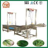 Frucht-Unterlegscheibe und Gemüse-Waschmaschine