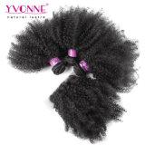 イボンヌの毛のアフリカのねじれたカールのブラジルの毛閉鎖が付いている毛3束の