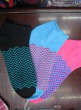 Todos los colores señoras calcetines para el desgaste de la primavera/otoño