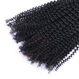 卸し売り自然で黒いブラジルの人間のねじれたカーリーヘアーの拡張