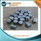 De Mijnbouw van het Carbide van het wolfram tipt Achthoekig Carbide voor de Boring van de Kern