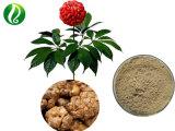 Organic Panax Notoginseng Extraia Sanchinoside 50% UV
