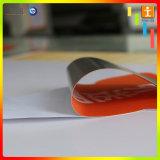3D VinylSticker van de Grafiek van de Vloer van de Reclame van de Druk