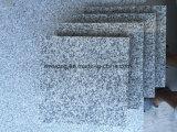 Nuove mattonelle grige poco costose cinesi della Cina Rosa Porrino del granito per la pietra per lastricati