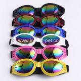 Óculos de sol bonitos do cão da fonte do animal de estimação de China