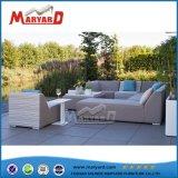 China-Lieferanten-im Freiengarten-Möbel-Sofa-Set