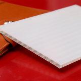 Feuilles creuses en plastique givrées de toiture de panneaux solides de polycarbonate pour l'écran