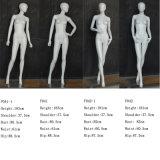Abstraktes Gesichts-weibliches Mannequin-Fiberglas für Verkauf