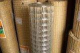 Qualitäts-galvanisierten Kurbelgehäuse-Belüftung beschichtete geschweißte Maschendraht-Zaun-Panels und geschweißten Maschendraht