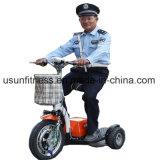 bicicleta eléctrica 3wheels para el adulto