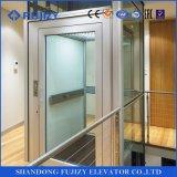 Migliore elevatore della villa di qualità di Fujizy Vvvf