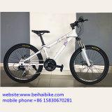 Nueva bici de señora Bike Women Bike City del diseño