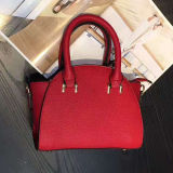 جيّدة يبيع منتوجات لون اصطدام أنيق حمل [شوولدر بغ] مصمّم حقيبة يد لأنّ سيدات [س8539]