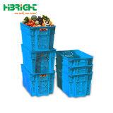 مغازة كبرى بلاستيكيّة [فولدبل] سوقيّة حمل صندوق