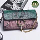 スネークスキンパターンEmg5184が付いている新しいHandbags Young Fashion Women到着デザイナー女性ショルダー・バッグ
