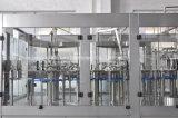 De volledige Automatische Lijn van het Flessenvullen van het Glas van de Drank van het Vruchtesap