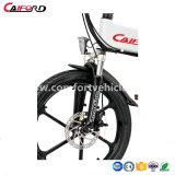 Alum Wheel Motor Used Electric Bicycle를 가진 2018년 접히는 Electric Bicycle