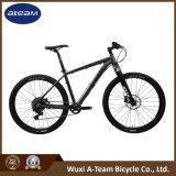 Bicicleta de montanha de Sram Gx 1*11 da fábrica da bicicleta (MTB26)