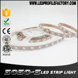 Kit della striscia della striscia LED 5050 di SMD 5050 LED, 60 indicatore luminoso di striscia di LEDs/M DMX LED