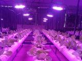 Le large spectre 1000W DEL élèvent la lampe d'usine des lumières DEL