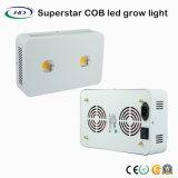 LA PANNOCCHIA LED modulare si sviluppa chiara con i chip del CREE per Veg