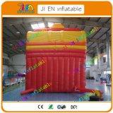 glissière gonflable géante de 8m/glissière de rebondissement/bonne glissière de véhicule de Qualtiy à vendre