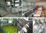 Frutas e Produtos Hortícolas Transformados máquina de limpeza e lavagem