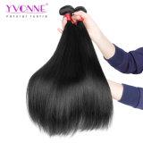 加工されていない100%の人間の毛髪の織り方、自然なブラジルのバージンの毛