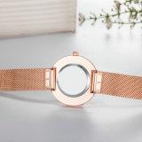 형식 고전적인 우연한 석영 숙녀 손목 시계 (Wy-17040)