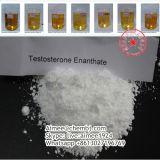 Порошок CAS Enanthate тестостерона порошка эстера Enanthate тестостерона: 315-37-7